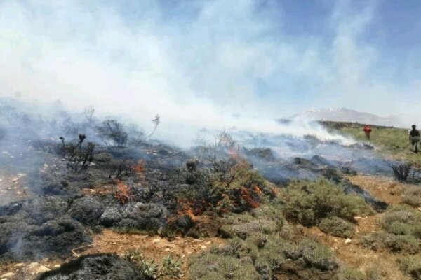 شناسایی عوامل آتش سوزی تفرجگاه سد کرخه